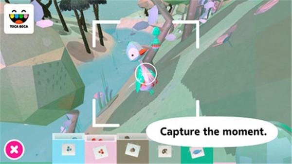 托卡大自然游戏电脑版