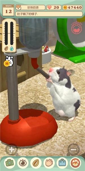 我的仓鼠电脑版